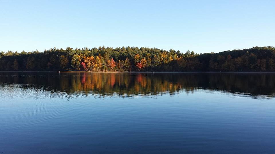 Walden Pond with autumn trees surrounding it